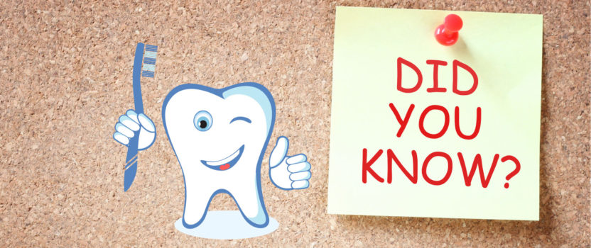 Did You Know: Dental Tooth Facts